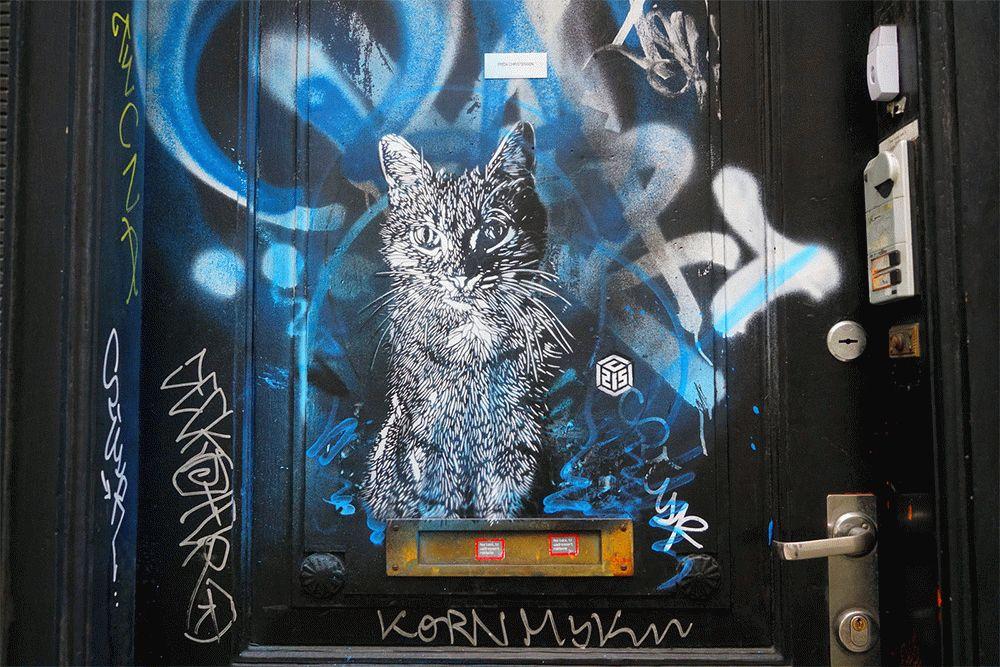 C215-cats-lastmag-05