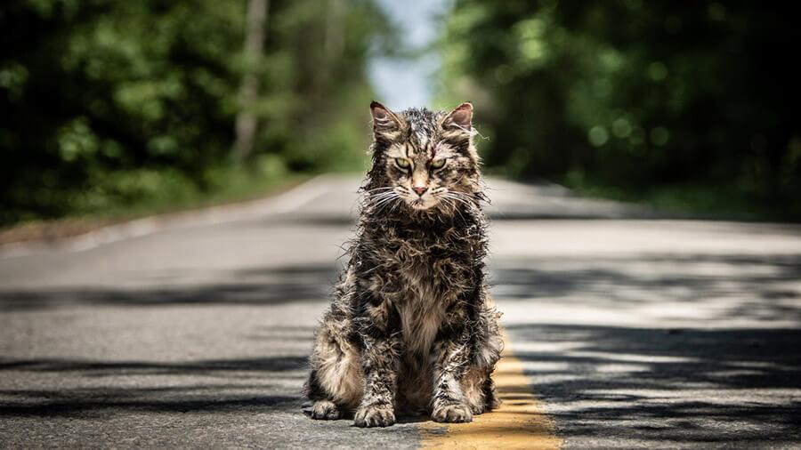 Лучшие фильмы 2019. Кладбище домашних животных.